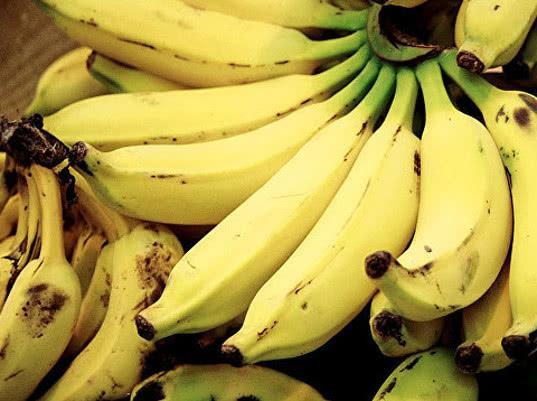 Бананы стали основной статьей мексиканского экспорта в Россию