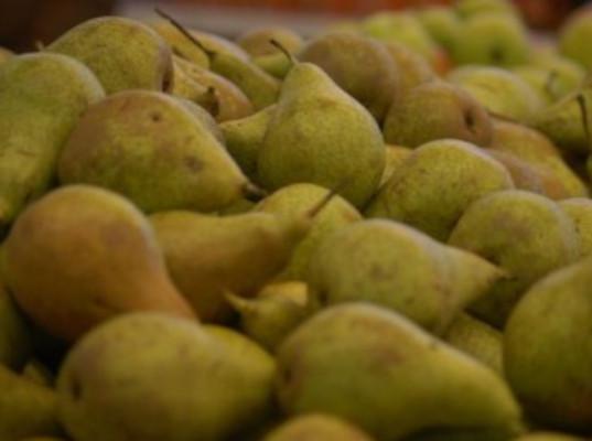 40 тонн польских груш нового урожая задержаны смоленскими таможенниками - Криминал