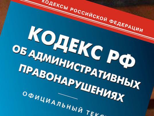 В России возбудили первое административное дело из-за вовлечения несовершеннолетних в митинги - Экономика и общество