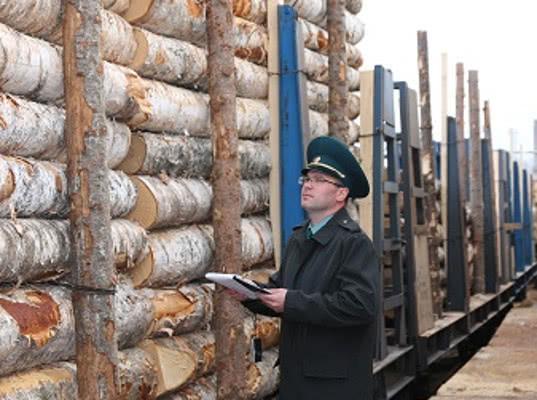 Тюменские таможенники возбудили уголовное дело по факту незаконного экспорта лесоматериалов в Афганистан - Криминал