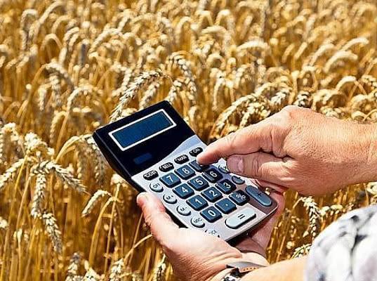 Цены на пшеницу выросли после проверок Россельхознадзора - Обзор прессы