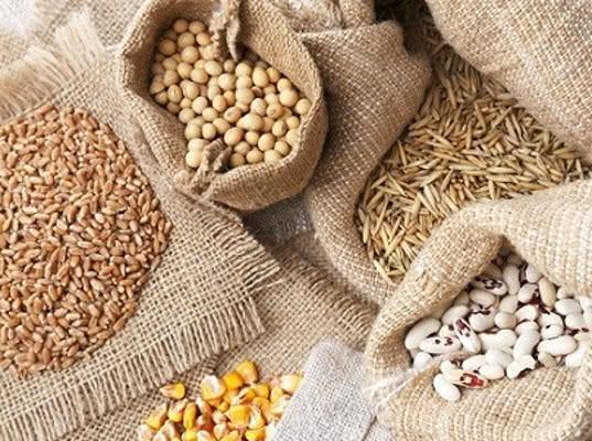 Развитие семеноводства в ЕАЭС будет способствовать росту взаимной торговли семенами более чем в 10 раз