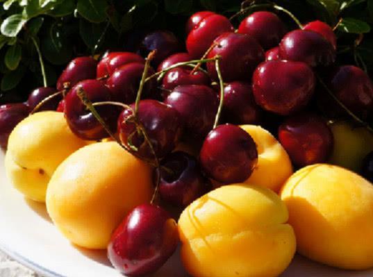 170 тонн небезопасных фруктов и овощей из азиатских государств задержаны на КП Карасук