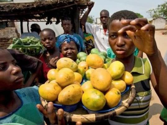 ЮАР хочет нарастить поставки фруктов в Россию