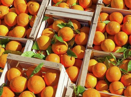 Первая партия апельсинов отправлена в Севастополь из Сирии