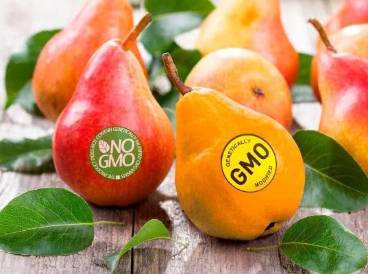 Россия избавится от импорта продуктов с ГМО - Обзор прессы