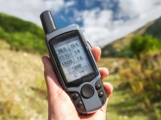 Депутаты вывели GPS-трекеры для животных из закона о «шпионской технике»