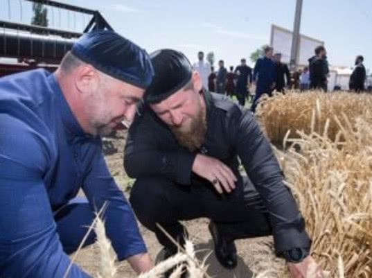 Власти Чечни намерены наладить экспорт сельхозпродукции в Саудовскую Аравию и ОАЭ