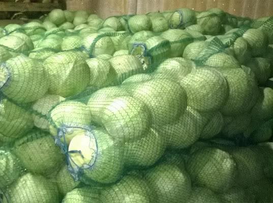 О задержании капусты, лука, огурцов из Республик Казахстан и Кыргызстан