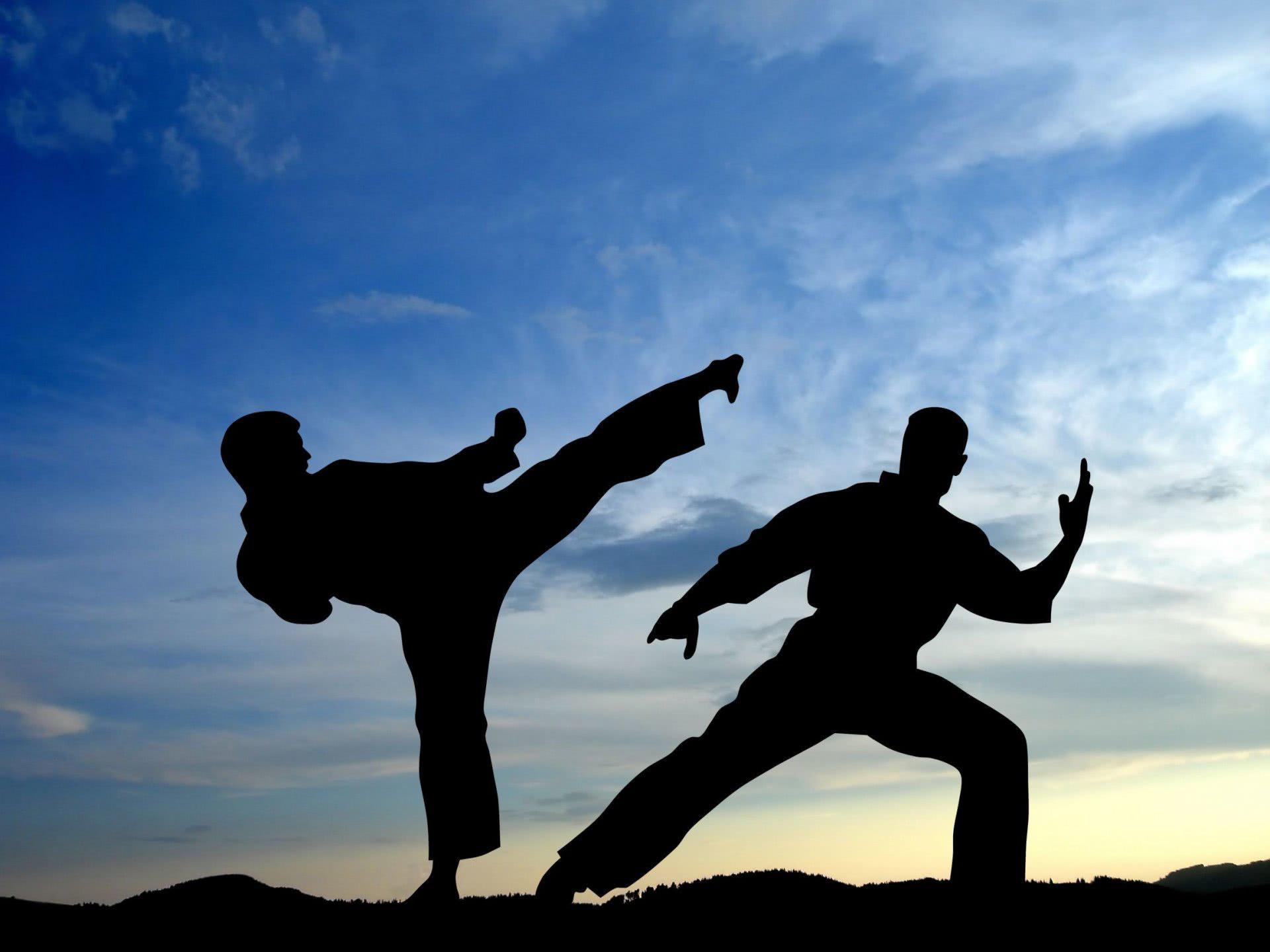 Инструктор по каратэ: «в Москомспорте меня попросили организовать титушек, чтобы разгонять агитаторов Яшина»