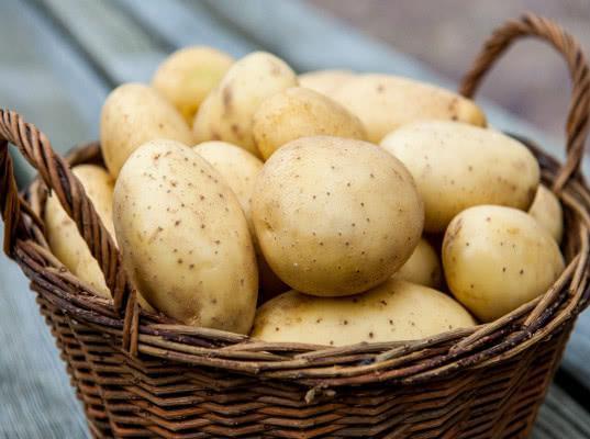 Российский импорт семенного картофеля преобладает над экспортом - Новости таможни