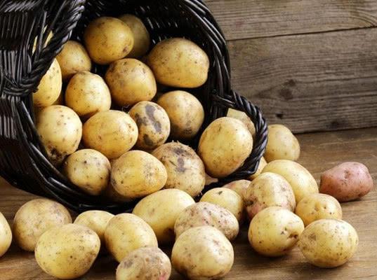 Более 98 тонн белорусского картофеля и яблок не прошли через Долосцы и Лобок