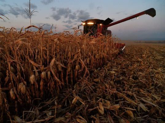 Обыски в крупнейших агрохолдингах страны означают старт передела отрасли
