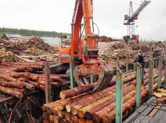 Перевозки лесных грузов: рынок фиксирует рост дефицита вагоно - Логистика