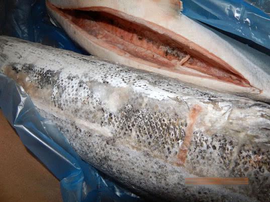 18 тонн лосося с признаками дефростации возвращены в Норвегию