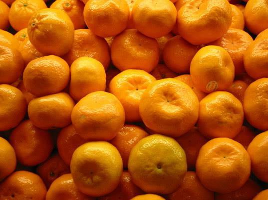 Более 490 тонн зараженных апельсинов и мандаринов из Турции не допущены к ввозу в Россию