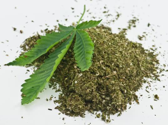 Житель Самары может лишиться свободы за посылку с марихуаной