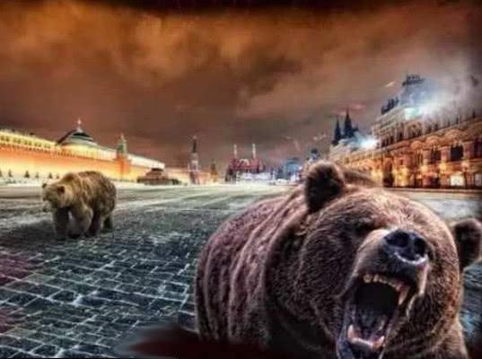 Украина ограничила транспортное сообщение с Россией только медведями