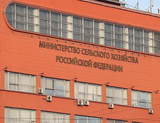 Минсельхоз уточнил законопроект о ввозе иностранных продуктов для личного пользования - Новости таможни