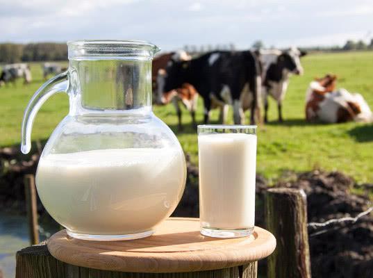 Россия и Беларусь договорились о процедуре снятия взаимных молочных ограничений