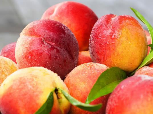67 тонн персиков и нектаринов из Сербии и Узбекистана забраковано Россельхознадзором