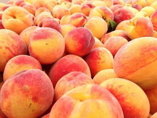 Марокко подтвердило факт производства персиков и нектаринов на площади 11 тыс. га в трёх регионах