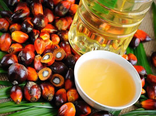В России могут отменить налоговые льготы для пальмового масла
