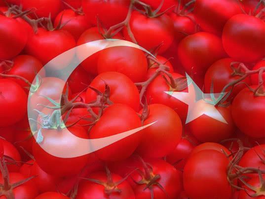 Минсельхоз сообщил о падении спроса на турецкие помидоры после смягчения эмбарго