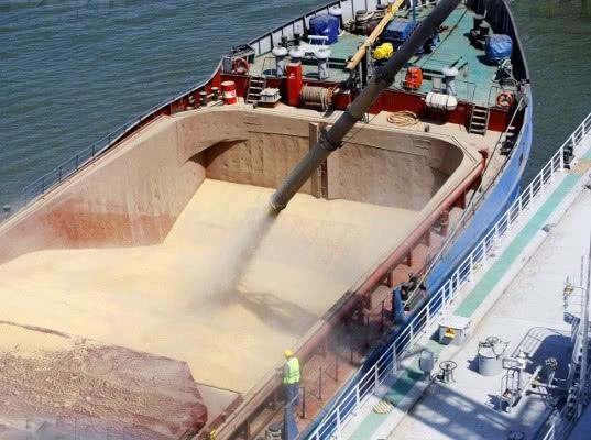 В Севастополе планируют закупить сухогрузы для поставок зерна в Сирию