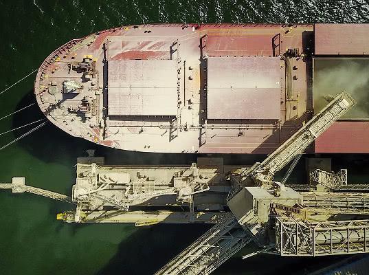 Китай начал переговоры о покупке зернового терминала на юге России