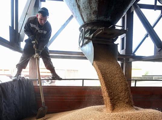 Cевастополь начал поставки зерна в Сирию - Новости таможни