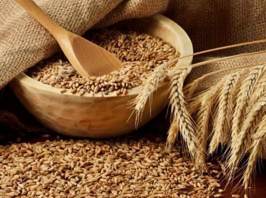 Цены на пшеницу растут в портах - Обзор прессы
