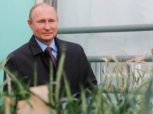 В ближайшие годы Россия выйдет в лидеры мирового агрорынка - Обзор прессы