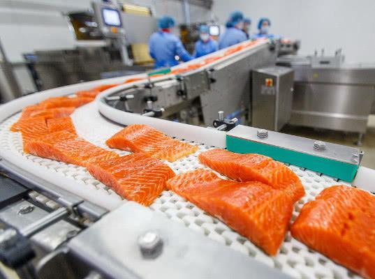 Двум белорусским производителям морепродуктов и мяса дали зеленый свет - Новости таможни