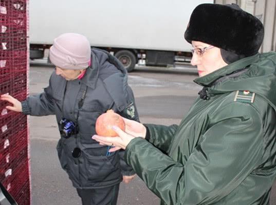 Псковская таможня выявила незаконные перемещения санкционных товаров - Криминал