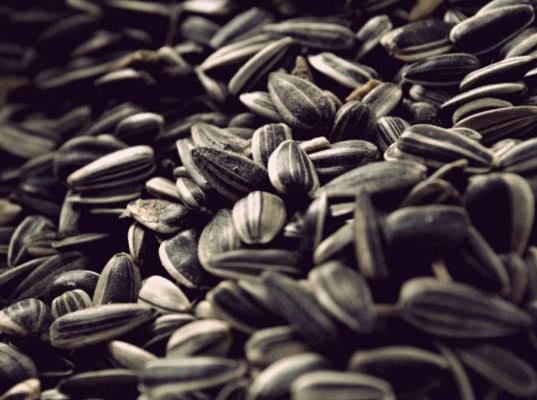 На Государственной границе в Курской области развернули большегруз с импортными семенами