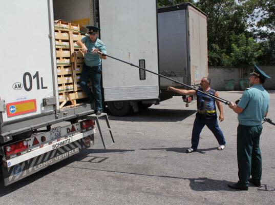 На границе Ставропольского края и Кабардино-Балкарии выявили  128 килограммов санкционного  сыра - Криминал