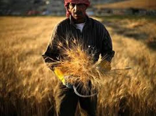 В Сирии сообщили о наращивании производства экспортных товаров