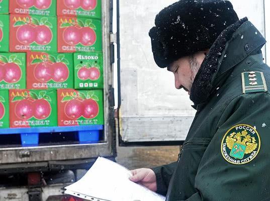 Шпик прошел через границу: поток «запрещенки» в Россию вырос на 80% - Обзор прессы
