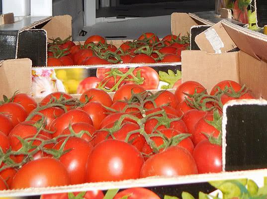 Свежие томаты вернули в Белоруссию - Криминал