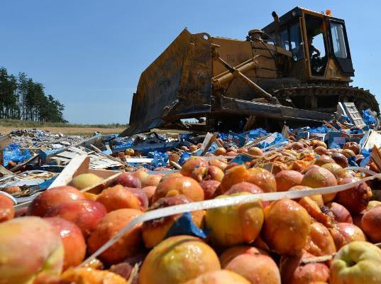 Путин рассказал об экономическом смысле уничтожения продуктов - Обзор прессы