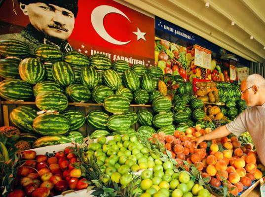 Импортерам турецкой плодоовощной продукции предложили предварительно информировать через модуль ФГИС «Аргус-Фито» - Новости таможни
