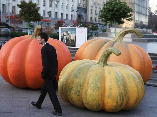 Российские аграрии получили от продэмбарго внушительные преимущества - Обзор прессы