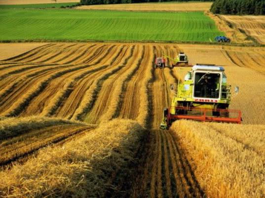 Структура экспорта АПК должна учитывать особенности потребления за рубежом