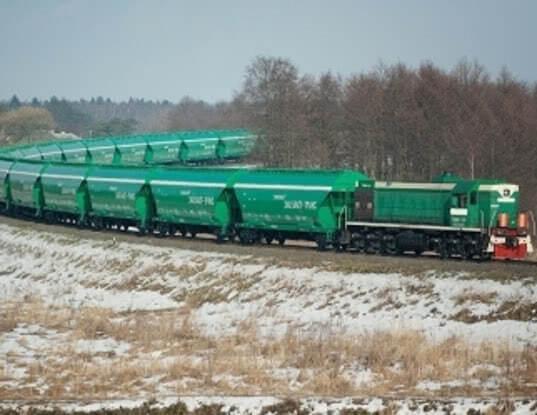 Закупленные в лизинг вагоны для экспорта сельхозпродукции поступили в Курганскую область