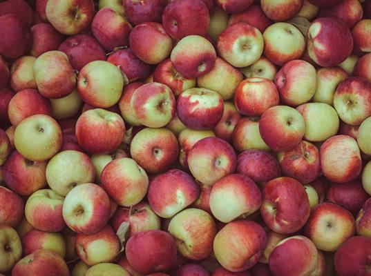 В Челябинской области  изъято и уничтожено 20 тонн польских яблок - Криминал