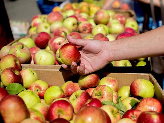 Задержана очередная партия белорусских яблок