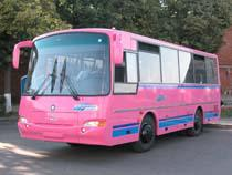 Автобусы-контрабандисты - Кримимнал - TKS.RU