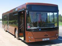 Пермская таможня сняла с маршрутов десять городских автобусов - Кримимнал - TKS.RU
