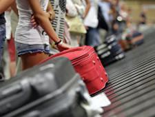 Совет Федерации одобрил закон об отмене бесплатного багажа для невозвратных билетов